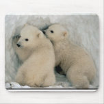 Oso polar Cubs Tapete De Ratones
