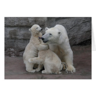 Oso polar Cubs y madre Tarjeta De Felicitación