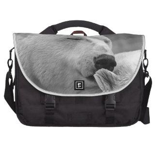 Oso polar de reclinación bolsas de ordenador