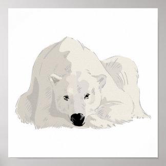 oso polar de reclinación poster