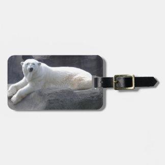 Oso polar de relajación etiquetas para maletas