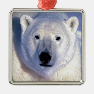 Oso polar adorno cuadrado plateado