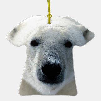 Oso polar adorno de reyes