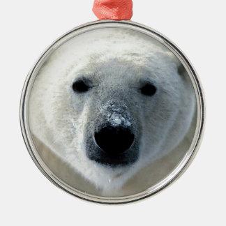 Oso polar ornamento de reyes magos