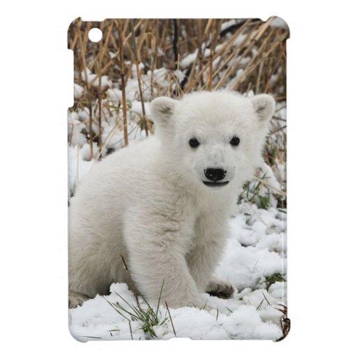Oso polar del bebé iPad mini fundas