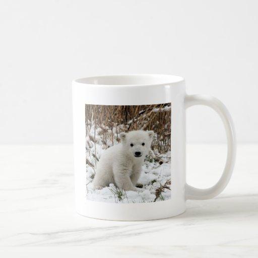 Oso polar del bebé taza de café