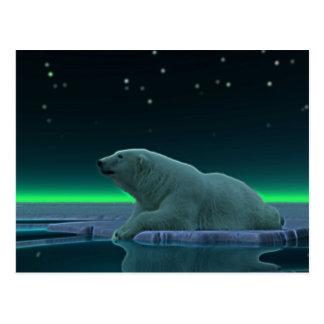 Oso polar del borde del hielo tarjeta postal