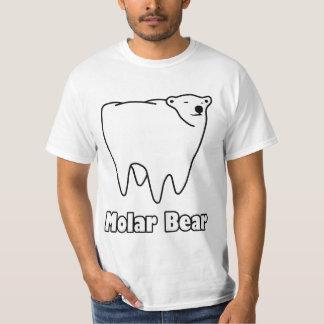 Oso polar del diente del oso molar playera