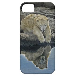 Oso polar del espejo del espejo funda para iPhone SE/5/5s