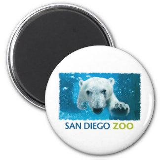 Oso polar del parque zoológico de San Diego Imán Redondo 5 Cm
