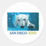 Oso polar del parque zoológico de San Diego Etiquetas Redondas