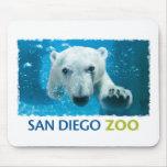 Oso polar del parque zoológico de San Diego Alfombrillas De Ratón