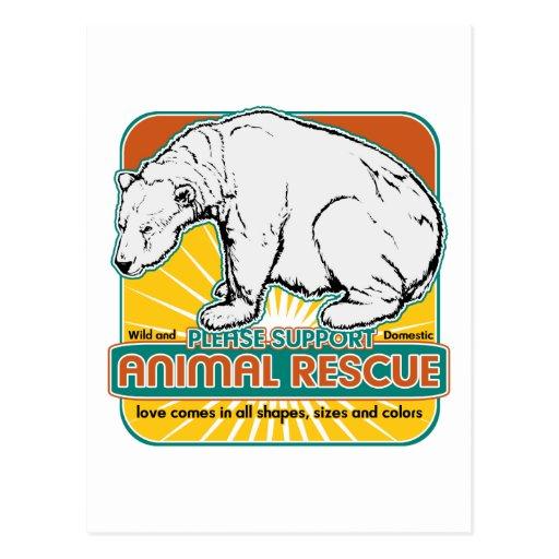 Oso polar del rescate animal postal