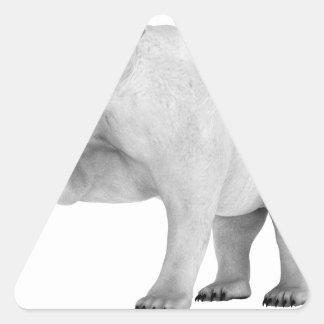 Oso polar del rugido pegatina triangular