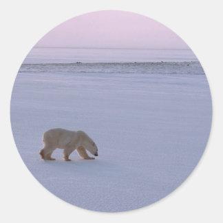 Oso polar distante pegatina redonda