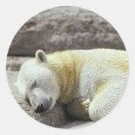 Oso polar el dormir etiquetas redondas