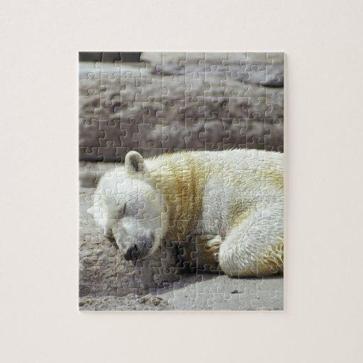 Oso polar el dormir puzzles con fotos