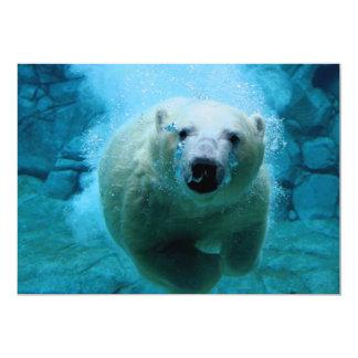 """Oso polar en agua invitación 5"""" x 7"""""""