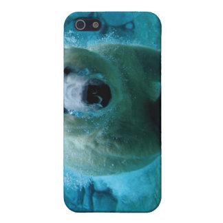 Oso polar en agua iPhone 5 carcasa