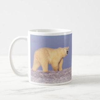 Oso polar en Alaska ártica Taza Básica Blanca