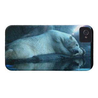 Oso polar en caso de la mota del rezo 2 Case-Mate iPhone 4 cárcasa