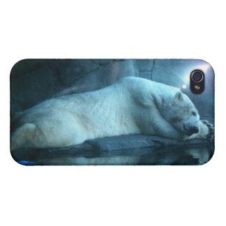 Oso polar en caso de la mota del rezo 2 iPhone 4 protectores