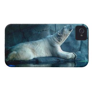 Oso polar en caso de la mota del rezo iPhone 4 Case-Mate protector