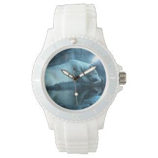 Oso polar en el rezo 2 relojes de mano