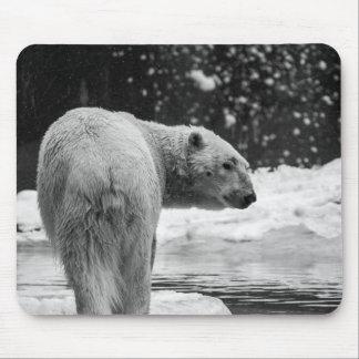 Oso polar en la nieve alfombrilla de ratón