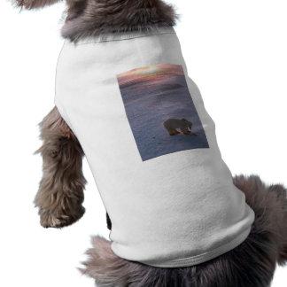 Oso polar en la puesta del sol ropa para mascota
