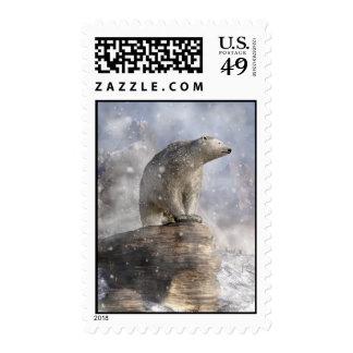 Oso polar en una nevada sello