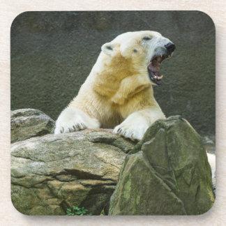 Oso polar - enojado posavasos