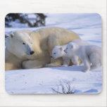 Oso polar femenino que se acuesta con 2 coyscubs alfombrillas de ratones