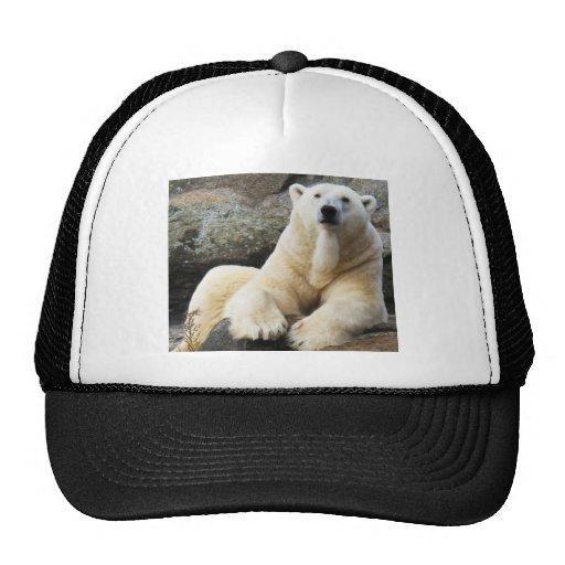 Oso polar gorros bordados