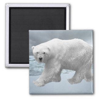 Oso polar imanes de nevera