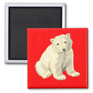 Oso polar imán cuadrado