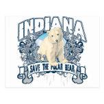 Oso polar Indiana Tarjeta Postal
