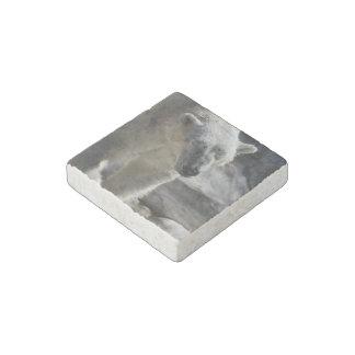 Oso polar lindo imán de piedra