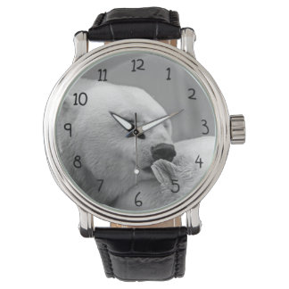 Oso polar lindo reloj de mano