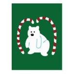 Oso polar lindo tarjetas postales