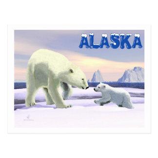 Oso polar - mamá Nose Best Tarjetas Postales
