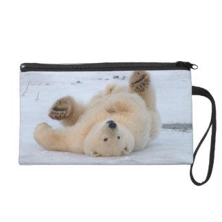 oso polar maritimus del Ursus cachorro que rueda