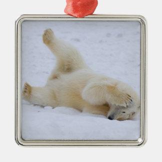 oso polar maritimus del Ursus cachorro que rueda Adorno