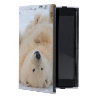 oso polar, maritimus del Ursus, cachorro que rueda iPad Mini Carcasa