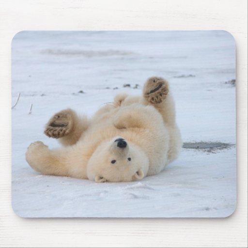 oso polar, maritimus del Ursus, cachorro que rueda Alfombrillas De Ratón