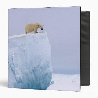 """oso polar, maritimus del Ursus, en un gigante Carpeta 1 1/2"""""""