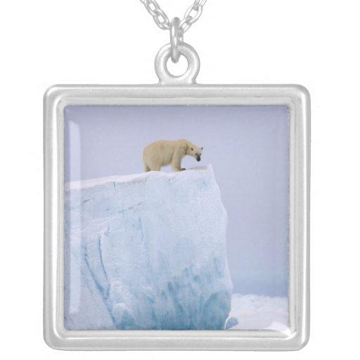 oso polar, maritimus del Ursus, en un gigante Colgantes Personalizados