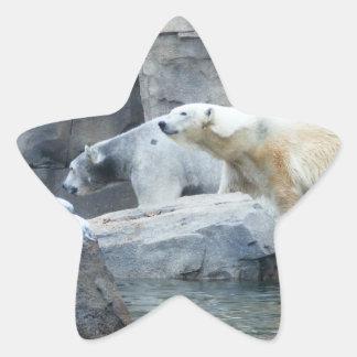 Oso polar: Nakita y Berlín Pegatina En Forma De Estrella