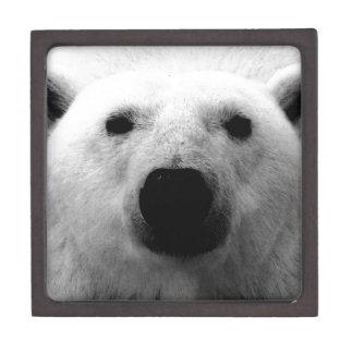 Oso polar negro y blanco cajas de regalo de calidad