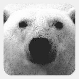 Oso polar negro y blanco calcomanía cuadrada